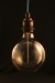 Thomas Edison Vintage Antique Light Bulb Globe_2164