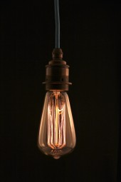 (a) Thomas Edison light bulb. Tear drop short. Screw. 40watt. Pk6.