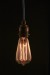 Thomas Edison Vintage Antique Light Bulb Globe_2255