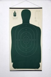 (h) Body Target Solid Green.